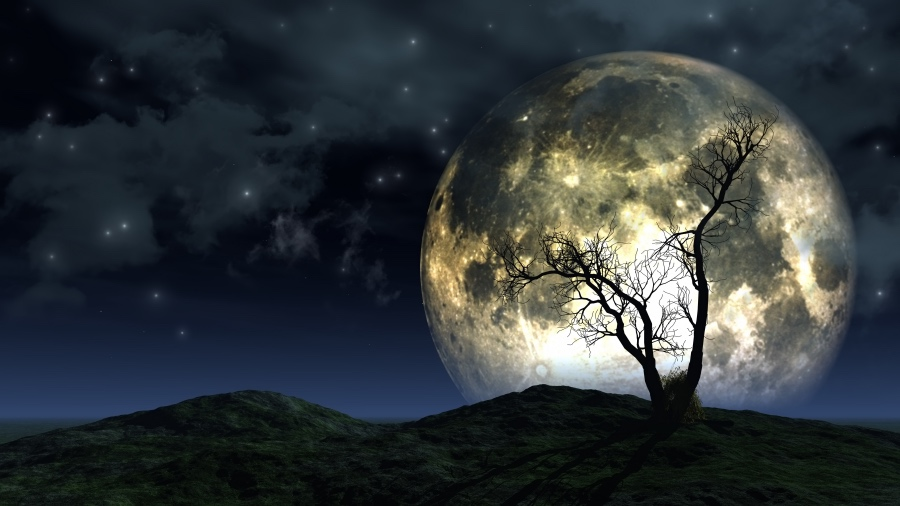 Moon Whispering